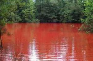 danau-darah