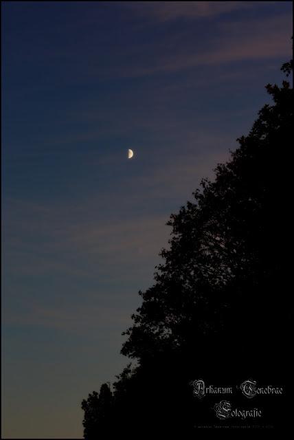 der Abendhimmel mit Mond