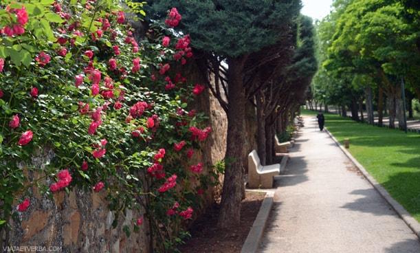 Calle Mirón en Soria, España. Por Viaja et verba