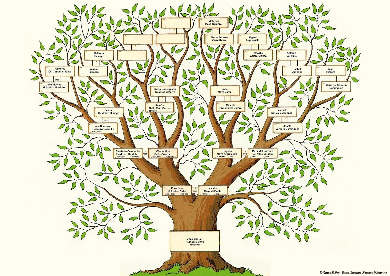 Genealogía José M. Huidobro