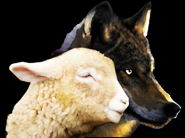 lobo e cordeiro