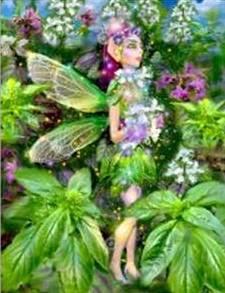 A está planta también se la conoce como Hierba de San José y las deidades relacionadas con ella son: Marte, (deidad romana) Krishna, (deidad hindú) Vishnú (deidad hindú) y Ares (deidad griega). Su sexo es masculino y su elemento es el fuego. El nombre del Hada que cuida de ella es Vegana.