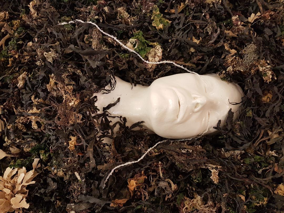 """""""Ophélie"""" 2019 algues, plâtre, résine, sel"""