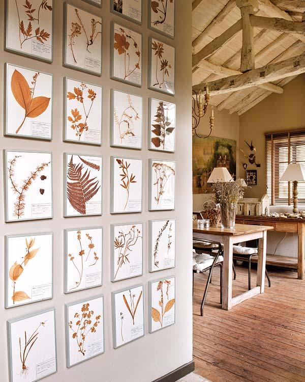 proyecto decoracion rustico vintage - laminas herbario