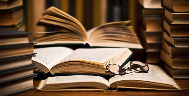 Mis otras novelas y libros publicados