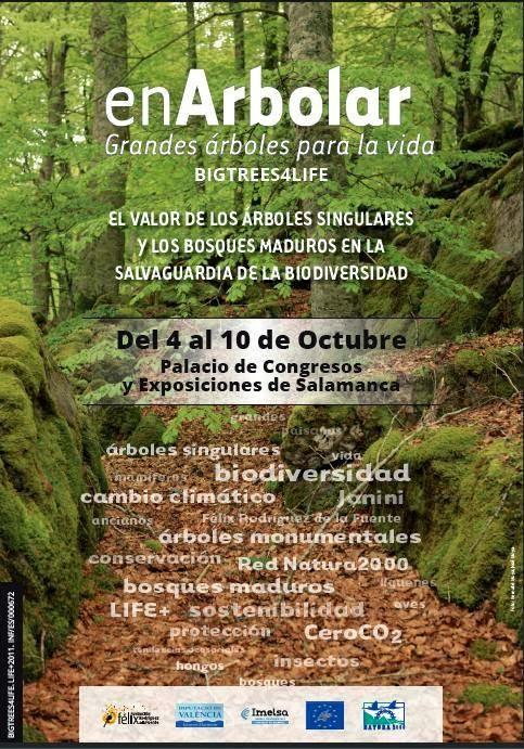 Nuestros Bosques Españoles