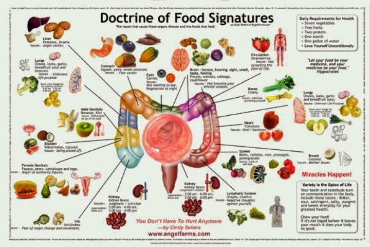 Doctrine of Signatures – Ancient Wisdom Suppressed By The Establishment [VIDEO]