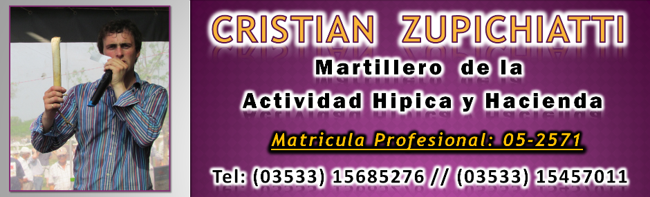 Cristian Zupichiati - Martillero