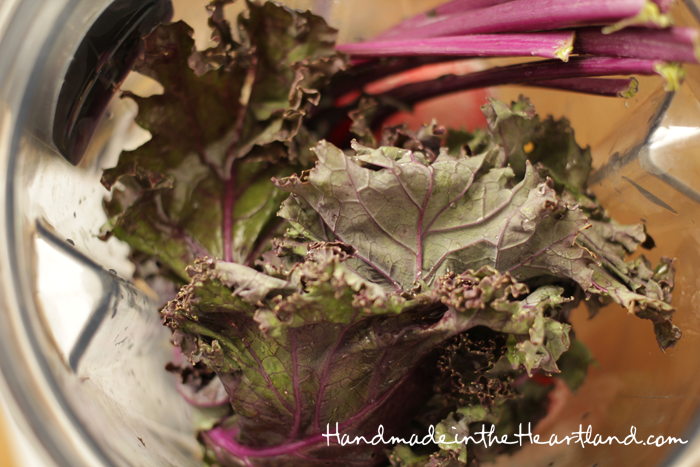 Vitamix Strawberry Pineapple Mango Kale Smoothie