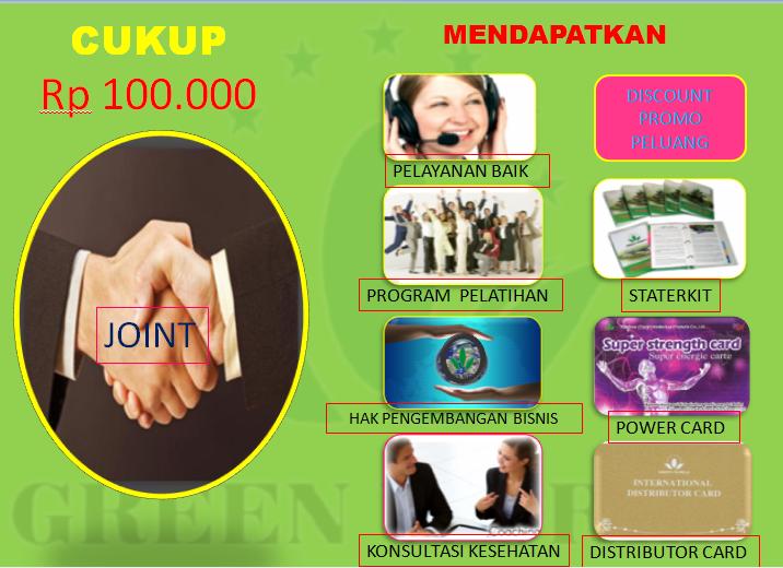 marketing plan green world global
