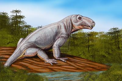 therapsida Sinophoneus