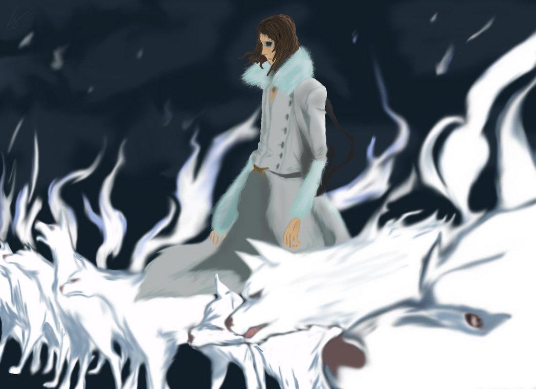 Anime Versus Coyote Starrk 14 Fan Arts