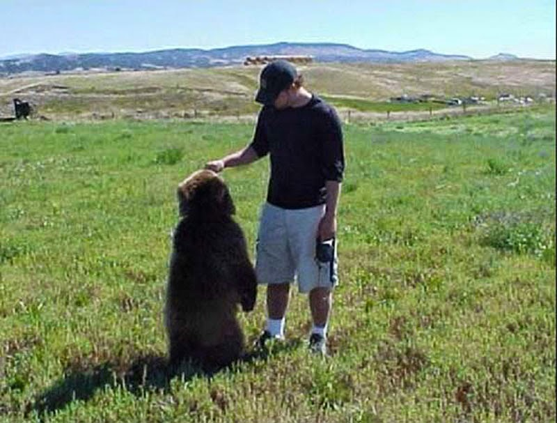 A Man Found Two Bear Cubs About to Die. Words Can't Describe What Followed.