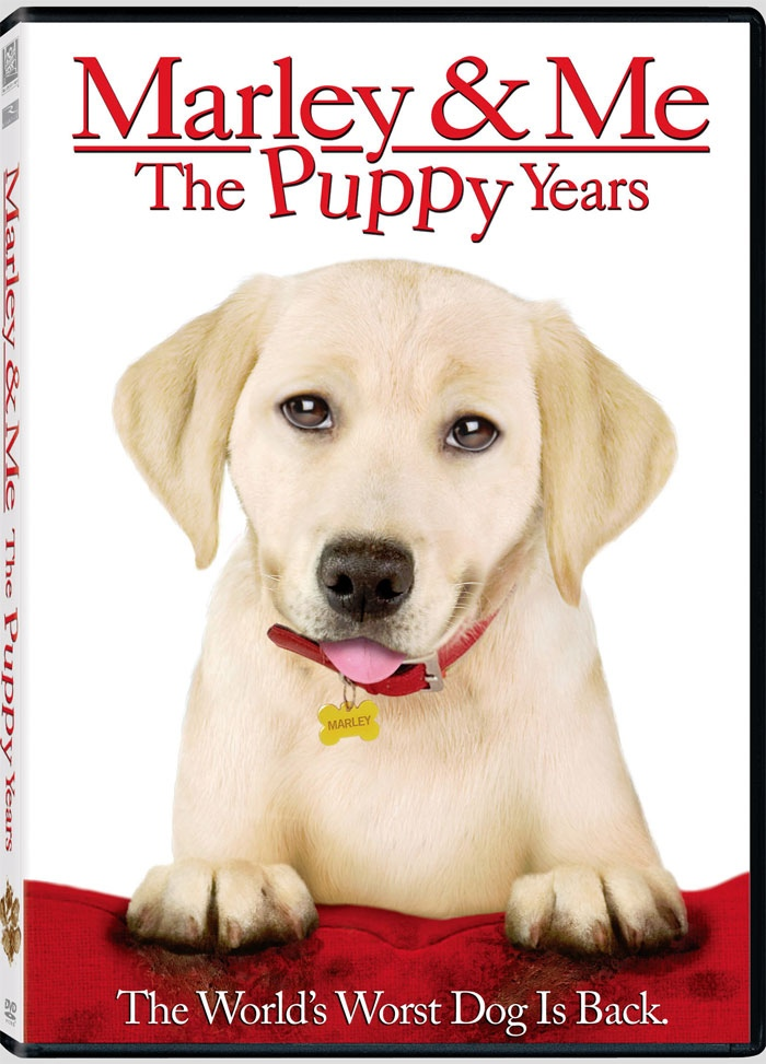 marley and me book review Read new romance book reviews, posts from your favorite authors marley quickly grew into a marley & me tenderly follows its subject from sunrise to.