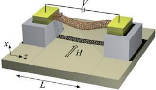 Carbon Nanotube