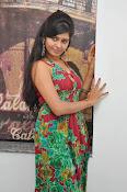 Madhumitha latest glam pics-thumbnail-20