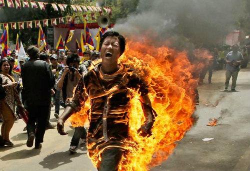 Autoimolação de tibetano