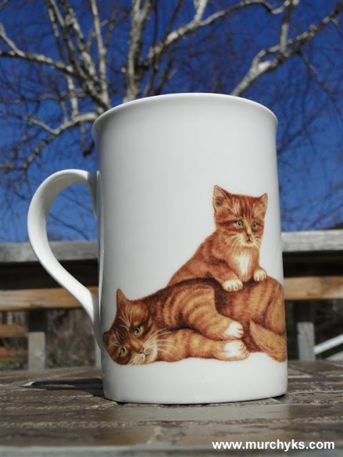 Kitty-Cats Cute Cup