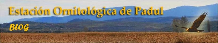 ESTACIÓN ORNITOLÓGICA DE PADUL
