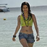 Wet Shraddha Das in Beach Spicy Photos
