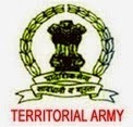 Territorial Army logo image