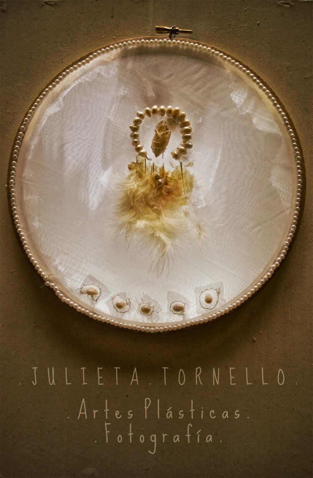 Julieta Tornello Fotografía y Artes Plásticas
