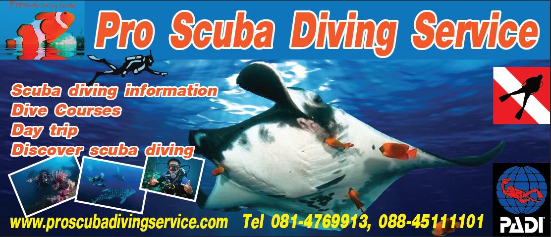 """""""Pro Scuba Diving Service"""""""