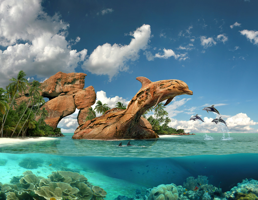 BIGXY.com: Delfines saltando en el mar azul - Imu00e1genes Fantu00e1sticas