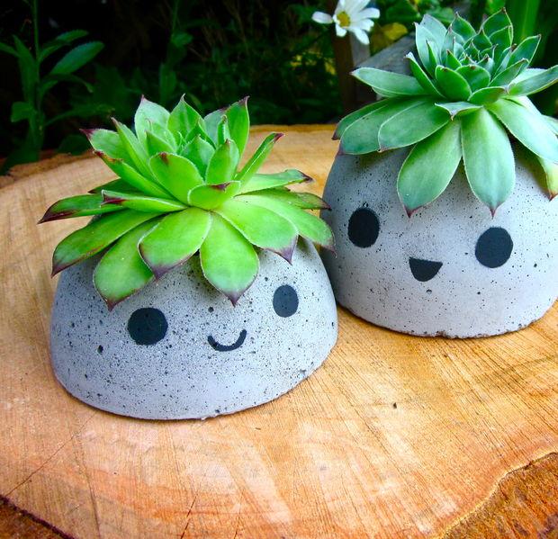 Vasos de concreto com cabelinhos de suculentas