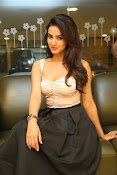 Sonal Chauhan sizzling photo shoot-thumbnail-9