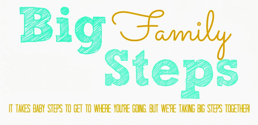 Big Family Steps