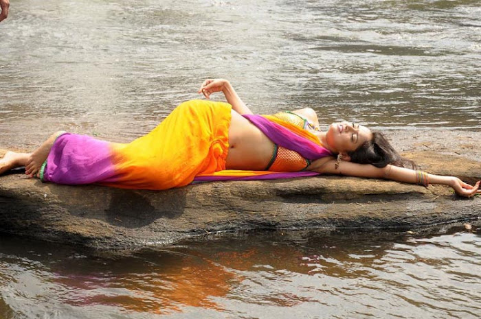 shanvi spicy galley in saree latest photos