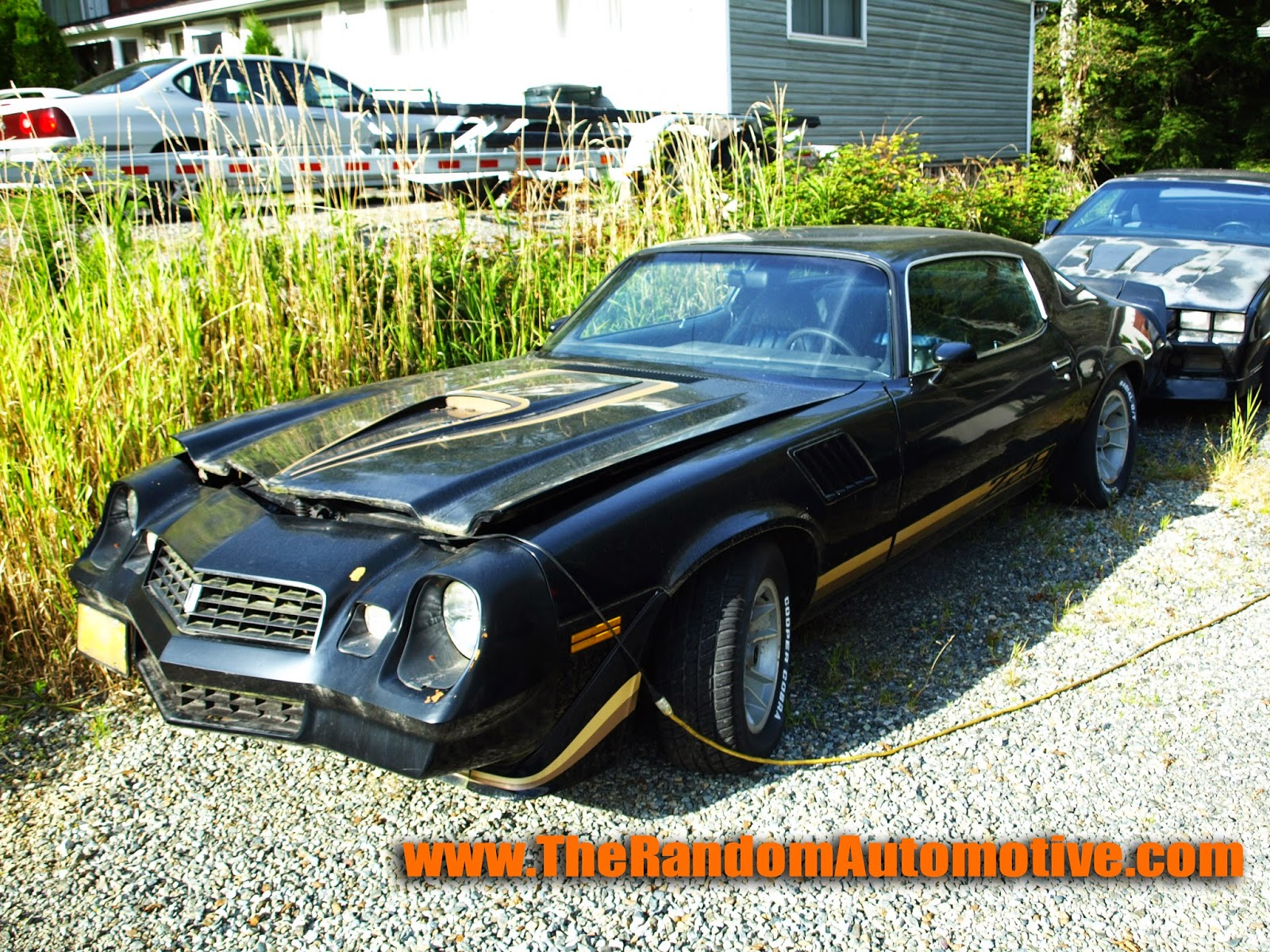 1979 z28 camaro chevy chevrolet alsaka ketchikan black the random automotive dylan benson abandoned