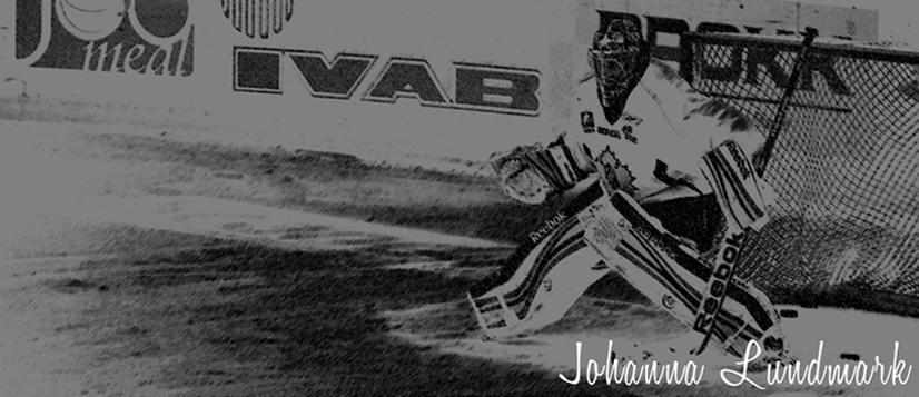 Hockeyfreeaket