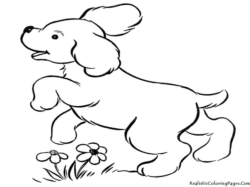 coloring pages of puppies - realistic coloring pages of dogs realistic coloring pages