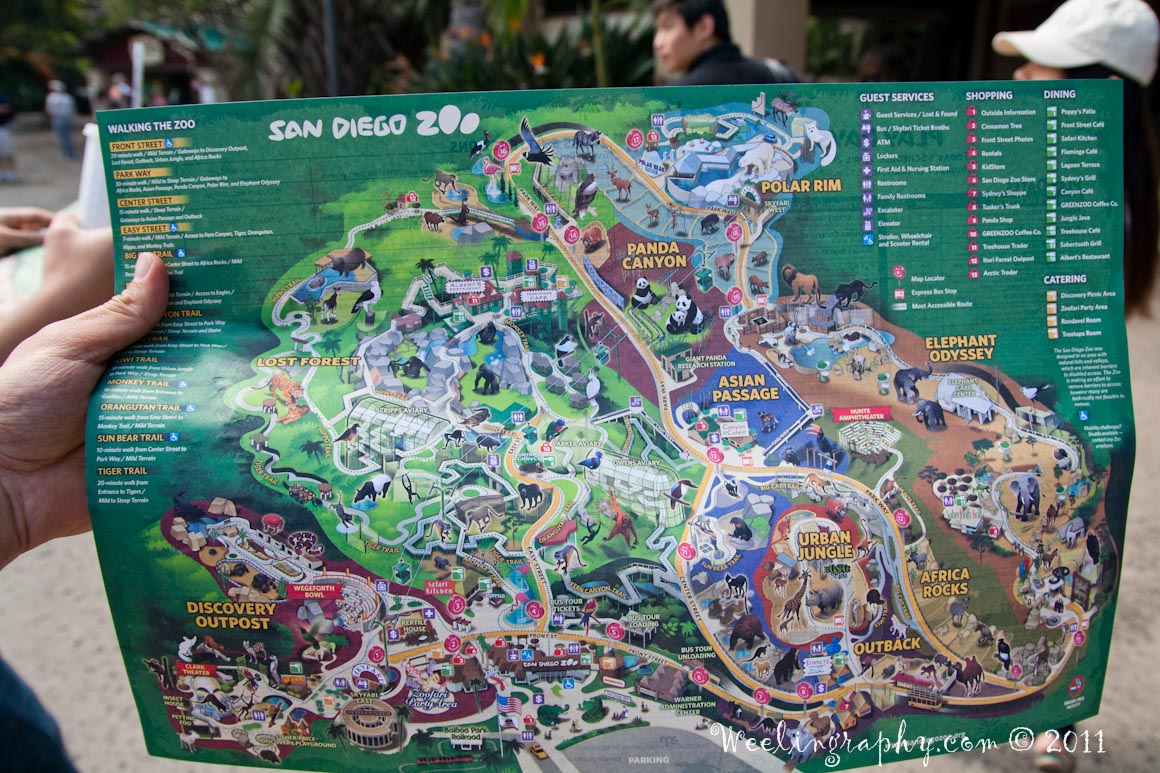 Weeling Travel Photography San Diego Zoo