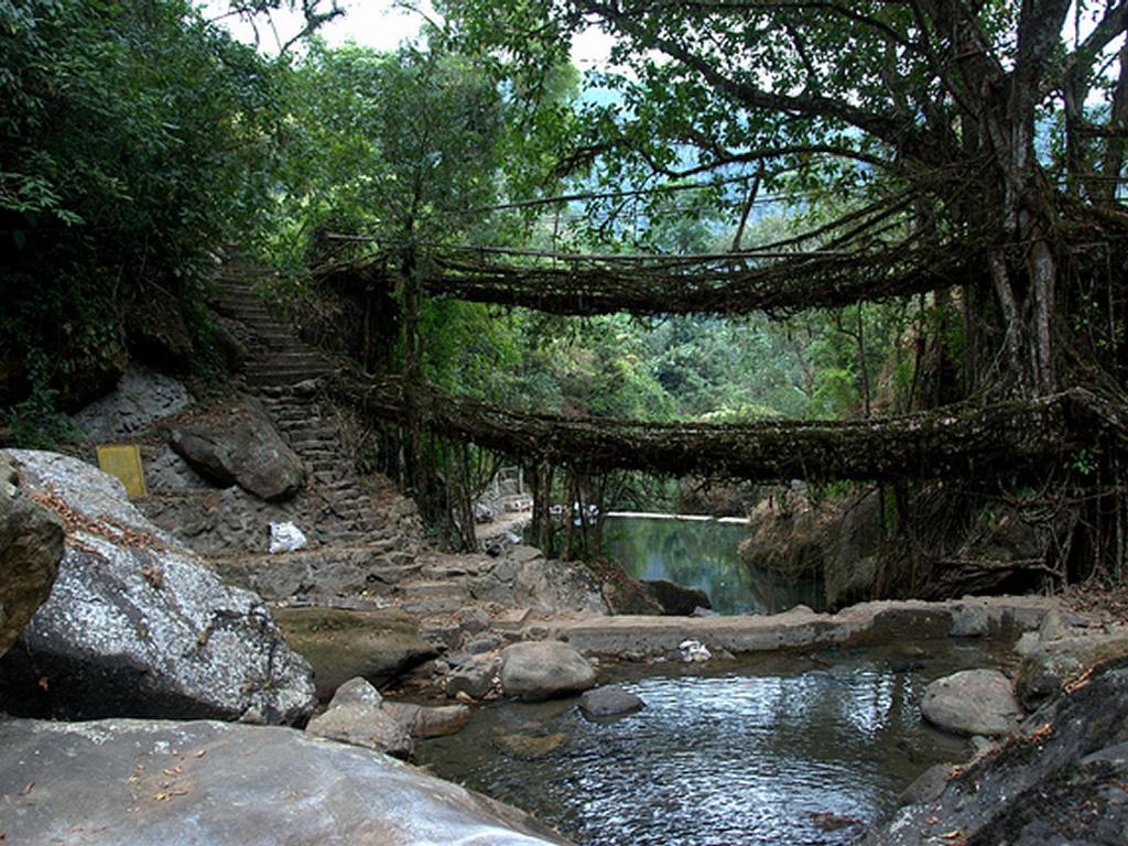 Cherrapunji India  City pictures : cherrapunji india 5025 9de10b6a540196f23c559efbdd924eed
