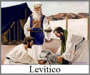 ler biblia, Estudo e Leitura da Bíblia em Vídeos,estudos sobre a bíblia