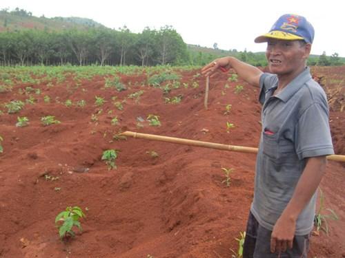 Gia Lai: Sự thật về lời đồn bị thần linh trừng phạt khiến cả làng hoang mang