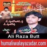 http://www.humaliwalayazadar.com/2014/11/ali-raza-butt-nohay-2015.html