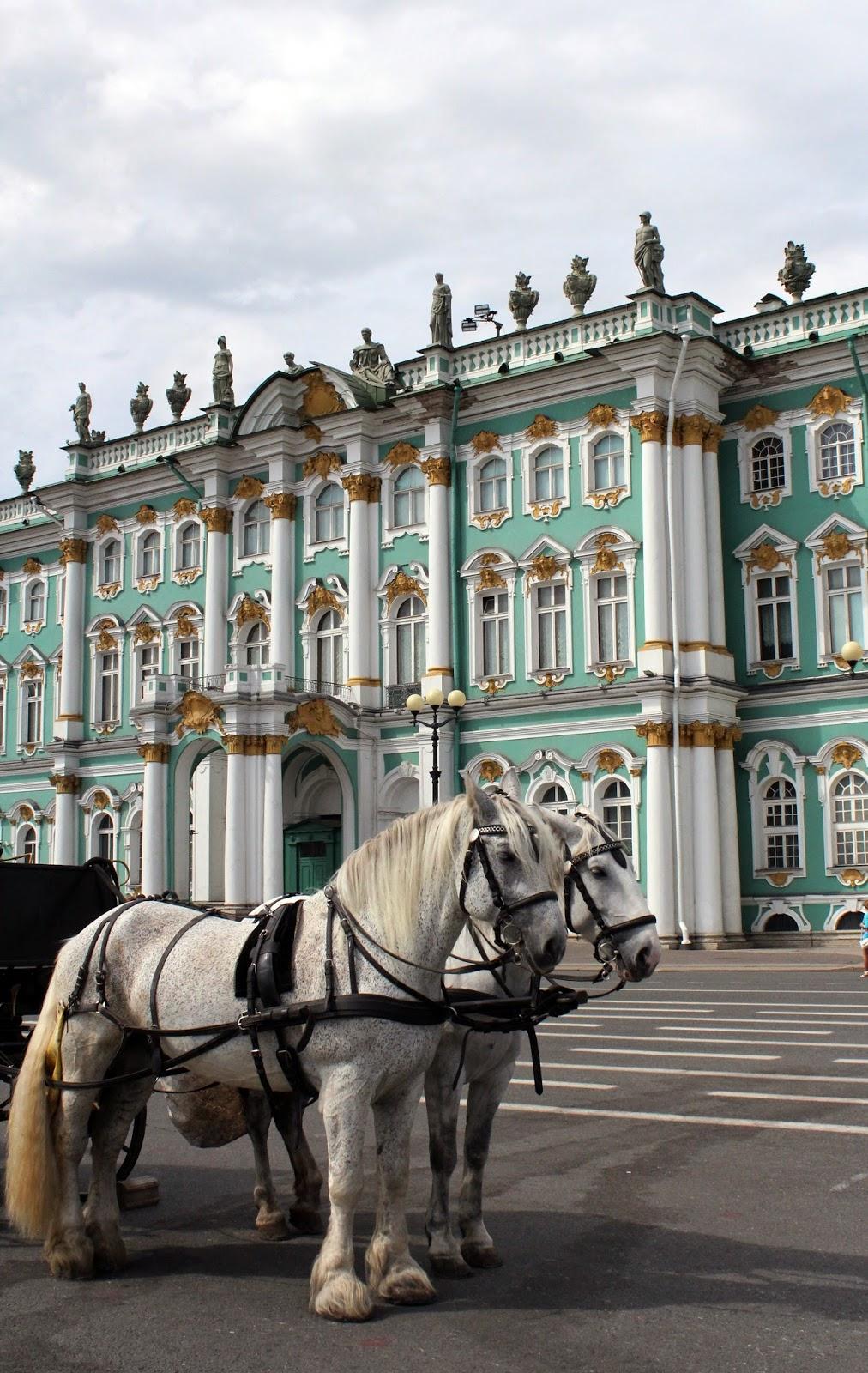 конные прогулки, Петербург