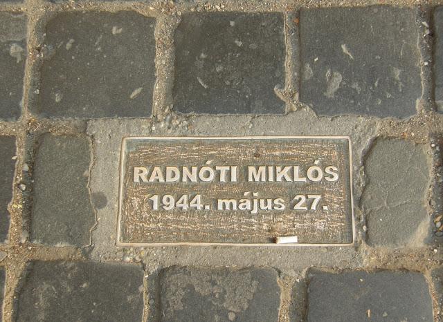 Hungary, Magyarország, Vác, emléktábla, Radnóti Miklós