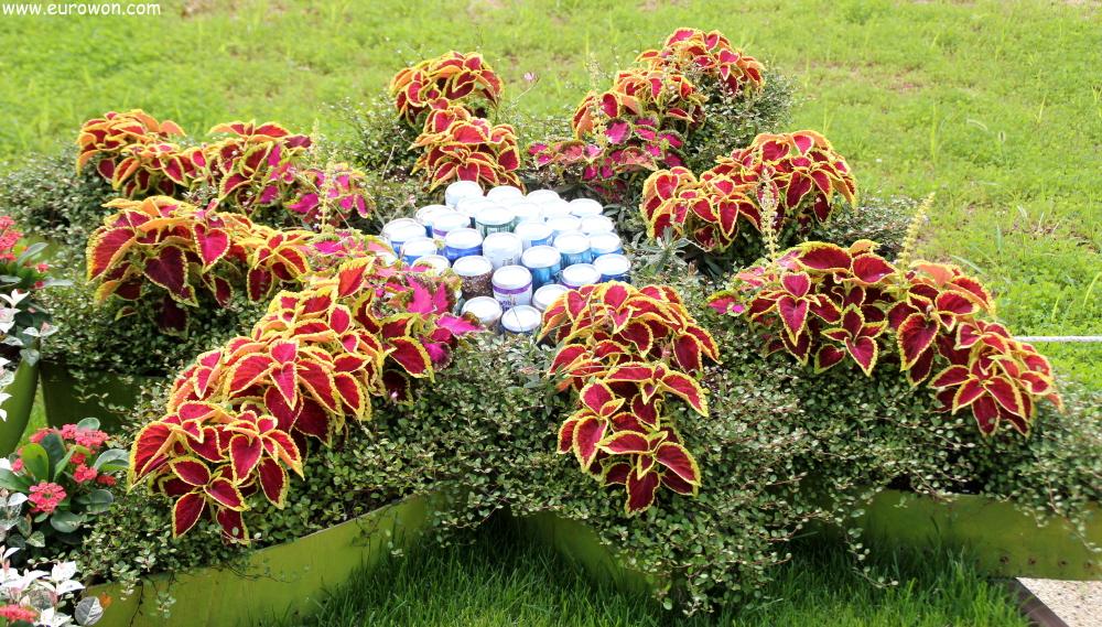 Visita a la expo de jardines de la bah a suncheon eurowon for Jardines reciclados