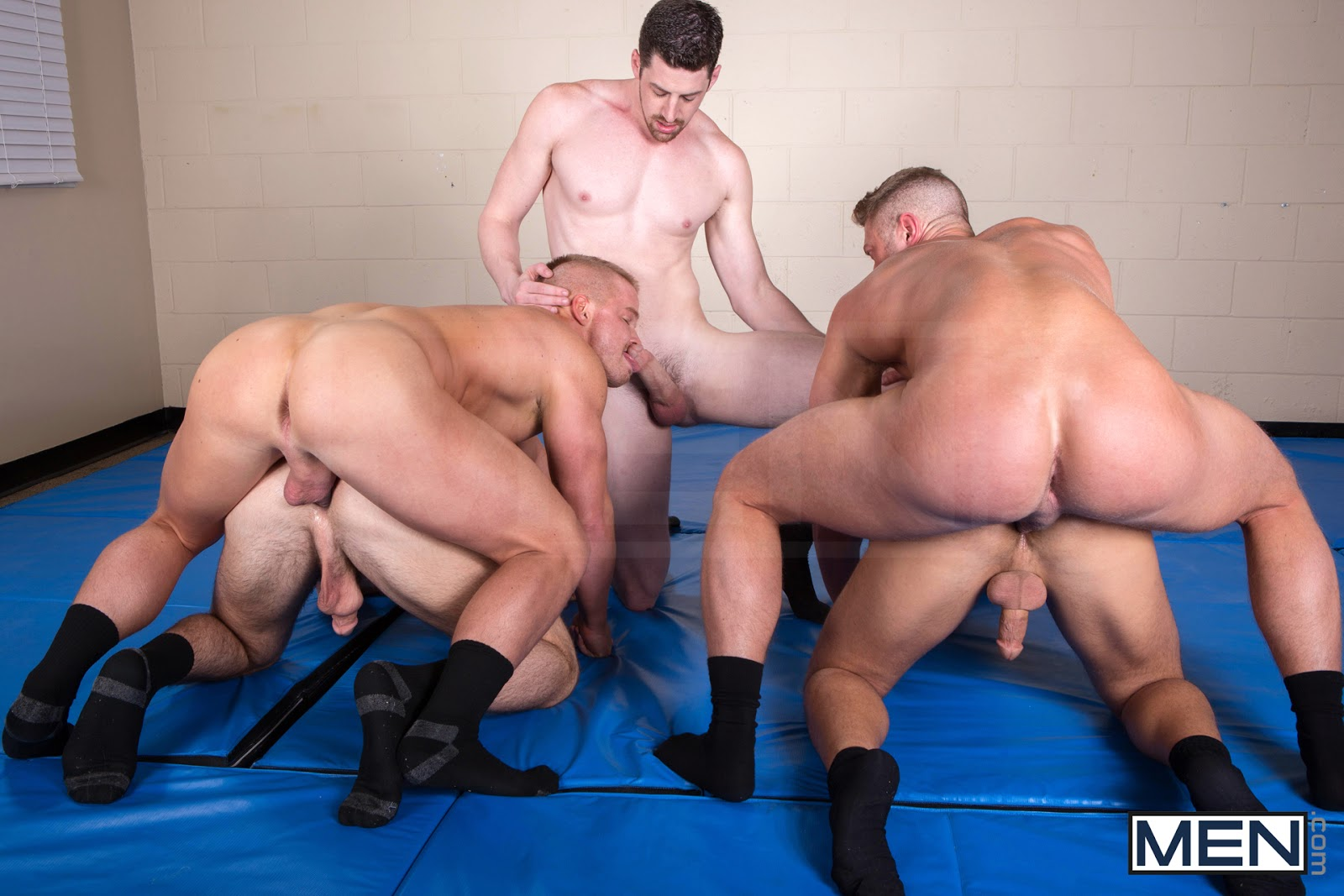 rocco reed video
