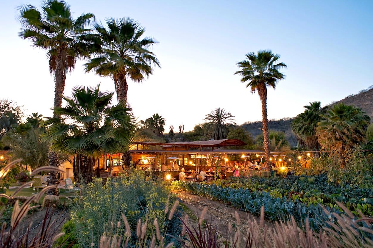 Flora Farms. Credit Rigoberto Moreno   A historic Baja city bounces back in style.