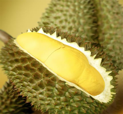 Manisan Kulit durian