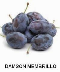Damson Membrillo