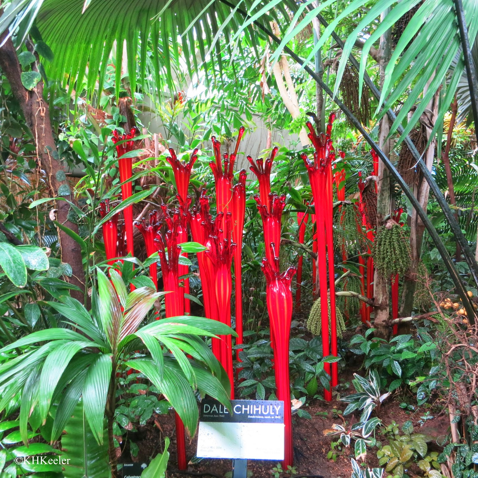 Chihuly glass, Denver Botanic Garden