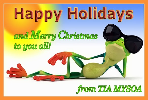Happy Holidays and a Merry Christmas to you all!
