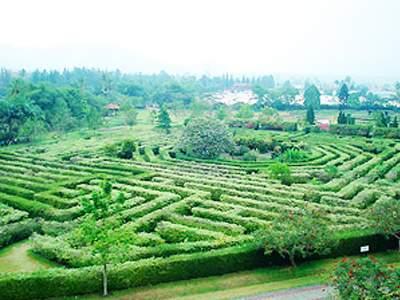 Foto taman bunga cianjur